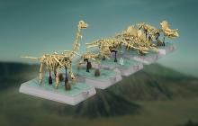 LEGO Ideas: Dinosaurs Fossils Skeletons wordt officiële LEGO-set