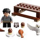 Eerste afbeelding van LEGO 30420 Harry Potter en Hedwig-polybag verschenen