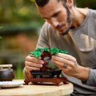 LEGO Creator Expert 10281  Bonsaiboompje terug op voorraad