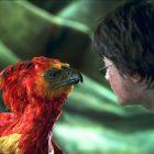 Eerste beelden LEGO Harry Potter 76392 Hogwarts Wizard's Chess en 76394 Fawkes, Dumbledore's Phoenix